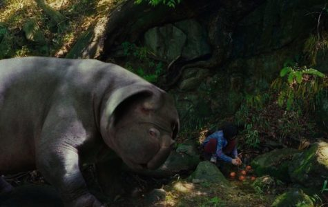 Netflix's Okja Leaves Viewers Speechless