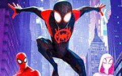 Spiderman: Into the Spider-Verse Review
