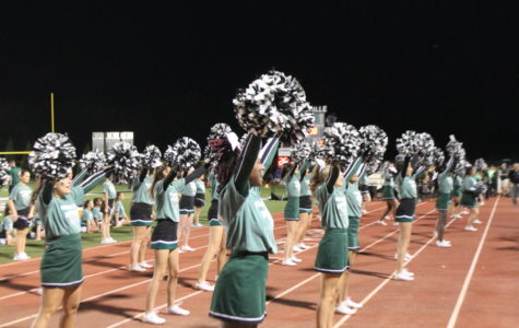 Cheerleaders performed several times at the game