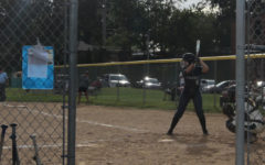 Softball Season Review