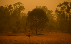 Bushfires Spread Through Australia