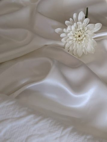Silk Pillowcases: Is It Worth the Hype?